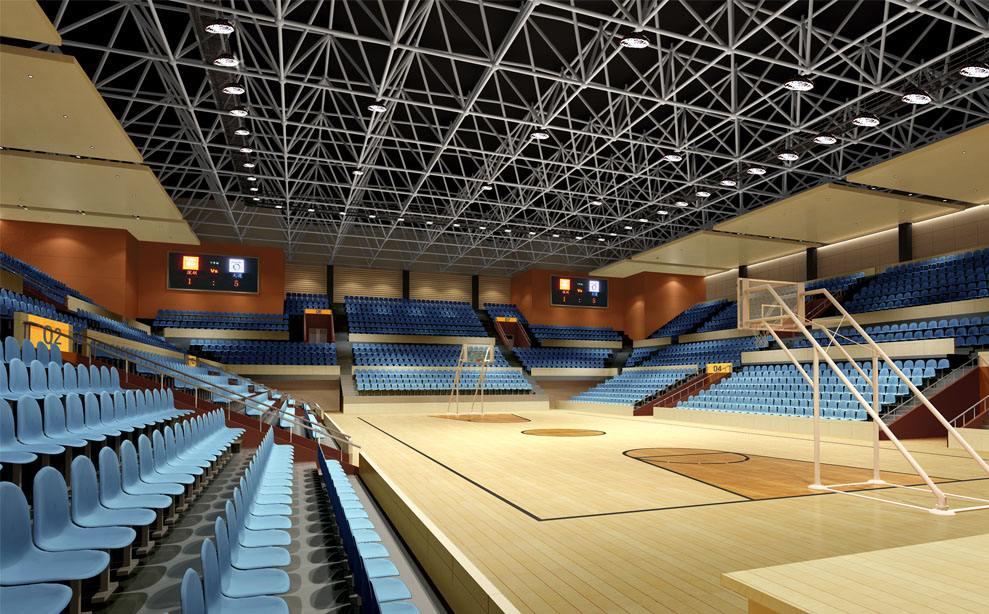 上海南京大學仙林校區體育館網架